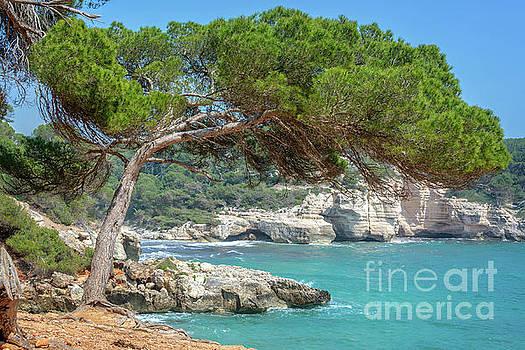 Mediterranean landscape in Menorca by Delphimages Photo Creations