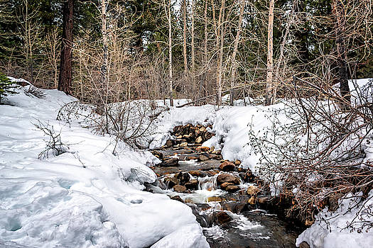 Melting Creek by Maria Coulson