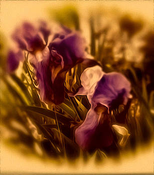 Memoria by Elizabeth Tillar
