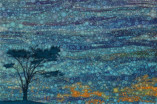 Mendocino Sunset by Daniel McPheeters