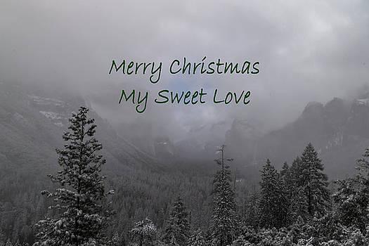 Merry Christmas Love by Norma Brandsberg