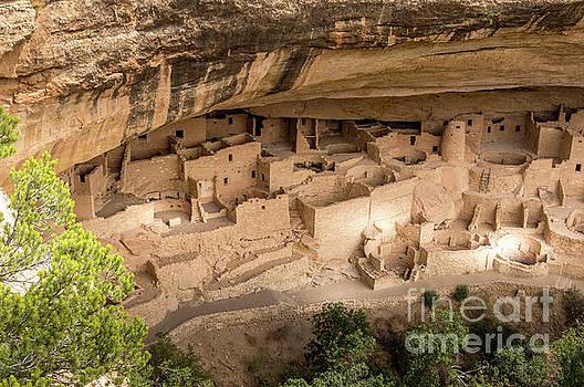 Mesa Verde Ancestral Puebloan Cliff Dwellings #3 by Blake Webster