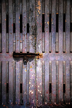 Metal Door by Svetlana Sewell