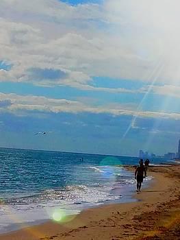 Miami Heat 2 by Vijay Sharon Govender