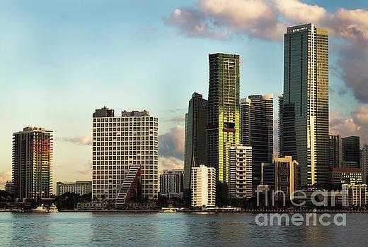 Miami Skyline by Edie Ann Mendenhall