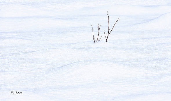 Michigan Moguls by Peg Runyan