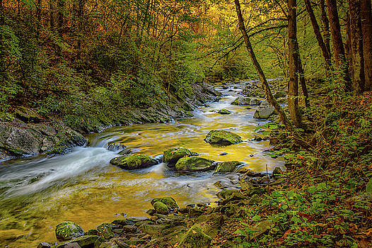 Middle Prong Little River  by Jeffrey Klug