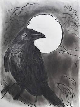 Midnight by Nadija Armusik