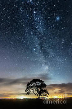 Mariusz Talarek - Milky Way and the Lonely Tree on the Limestone Pavement