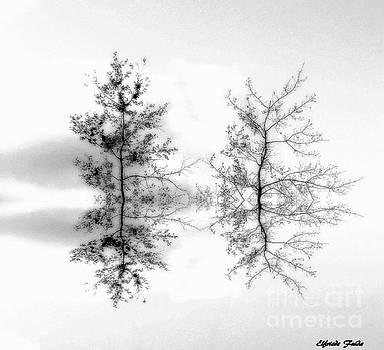 Minimalistic by Elfriede Fulda