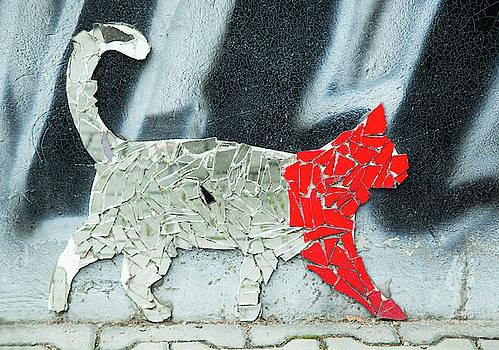 Ramunas Bruzas - Mirror Cat