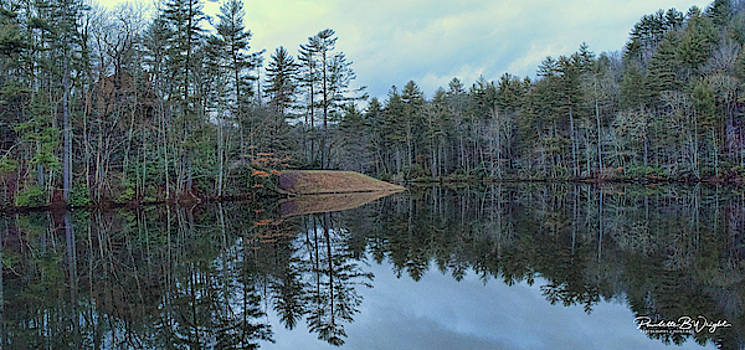 Mirrored Island by Paulette B Wright