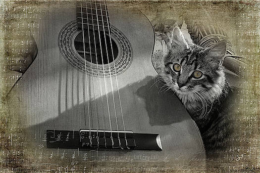 Miss Kitty and Spanish Guitar by Suzanne Fitzpatrick