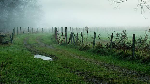 Mist by Chris Dahl