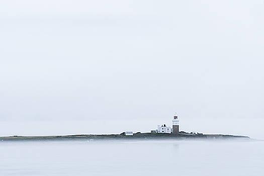 David Taylor - Misty Coquet Island