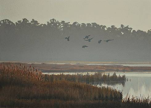 Misty Marsh by Peter Mathios