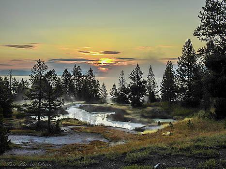 Misty Morning by Teri Ridlon