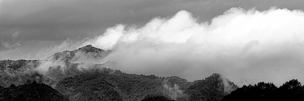 Misty Mountains II 3x1 Black and White by William Dickman