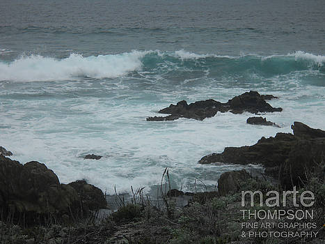 Misty Pacific Grove by Marte Thompson