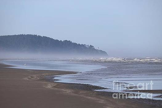 Misty Washington Beach by Carol Groenen