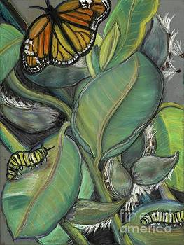 Monarch series I by Ann Hoff