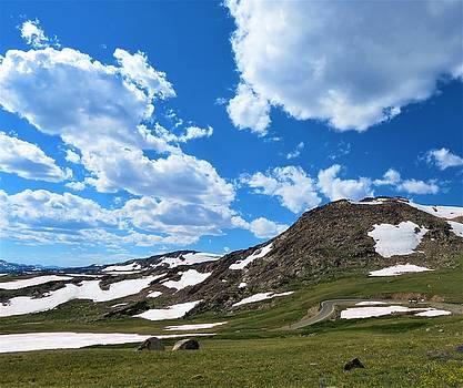 Montana 1 by Vijay Sharon Govender