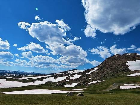 Montana 2 by Vijay Sharon Govender