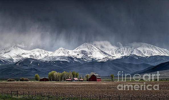 Montana Homestead by Brad Allen Fine Art