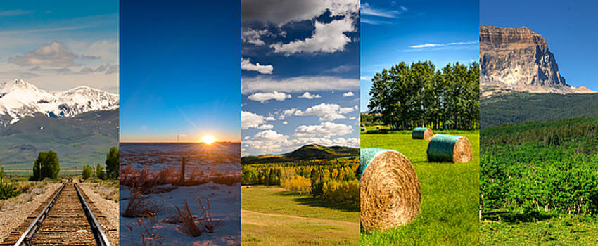 Prairie Scenic Composition 5 by Tin Tran