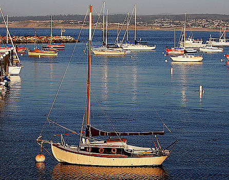 Monterey Harbor by TB Sojka
