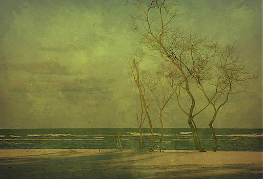 Moody Morn by Eagle Finegan