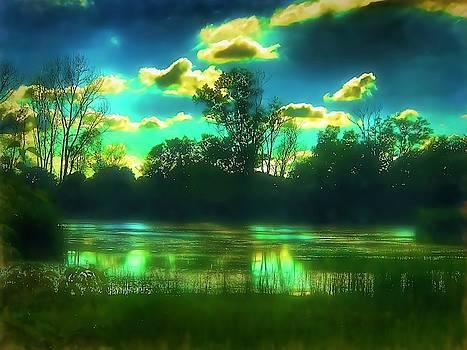 Moody Pond by Jack Wilson