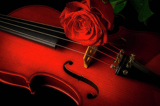 Moody Red Rose With Violin by Garry Gay
