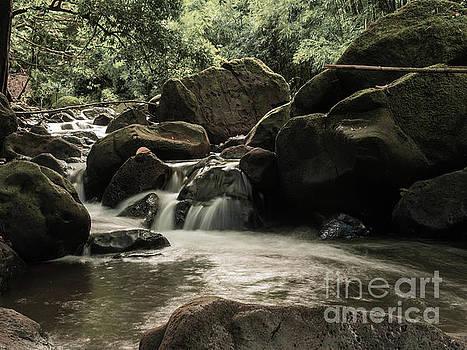 Asia Visions Photography - Moody Waterfalls 2