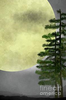 Benjamin Harte - Moon and Trees