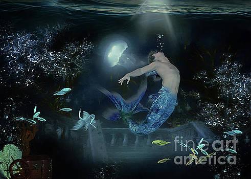 Moondance by Kelley Freel-Ebner