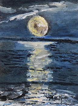 Moonglow by Michael Helfen