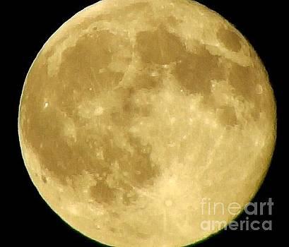 John LaCroix - Moonlight Becomes you