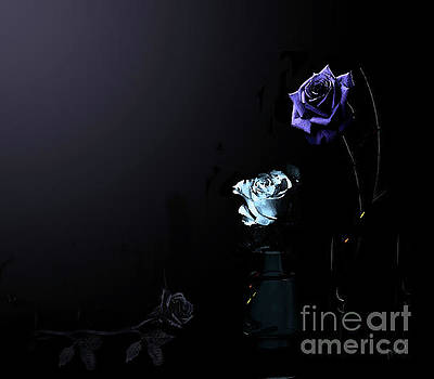 Moonlight Roses by J Marielle
