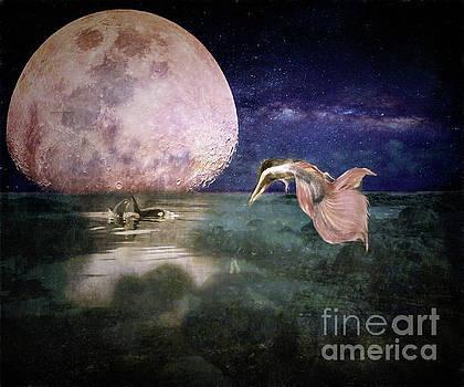 Moonlit Bath by Kelley Freel-Ebner