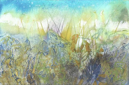Moonlit Field by Jill Williams