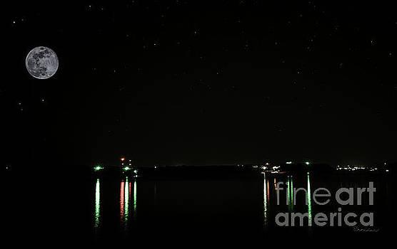 Ricardos Creations - Moonlit Medina Lake San Antonio TX 8364B