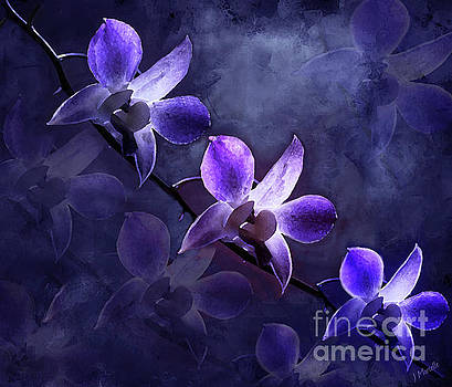 Moonrise on Purple Orchids by J Marielle
