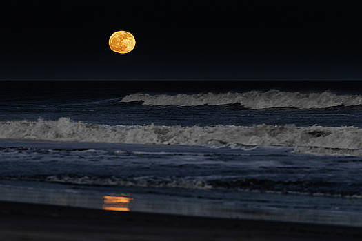 Moonrise over Assateague Island Beach by William Dickman