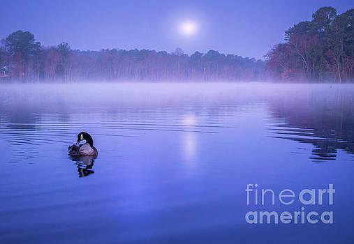 Moonset by Eric J Carter