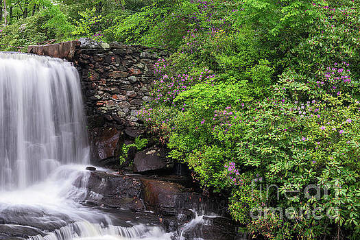 Moore State Park Waterfall by Sharon Seaward