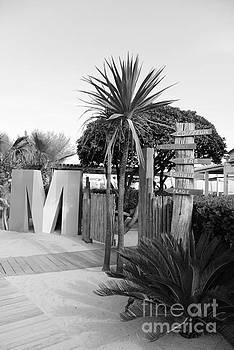 Moorea Beach  by Tom Vandenhende