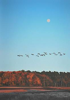 Morning Flight by Peter Mathios