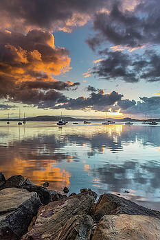 Morning Reflections Waterscape by Merrillie Redden