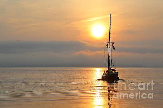 Sunrise Freedom by Rachel Morrison